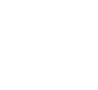 Viji Partner Initiative France