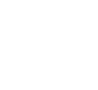Viji Partner Audencia Business School