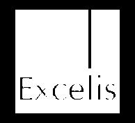 Viji Partner Excellis